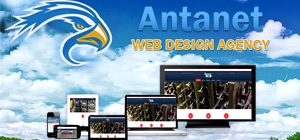 Antanet Web Design Agency